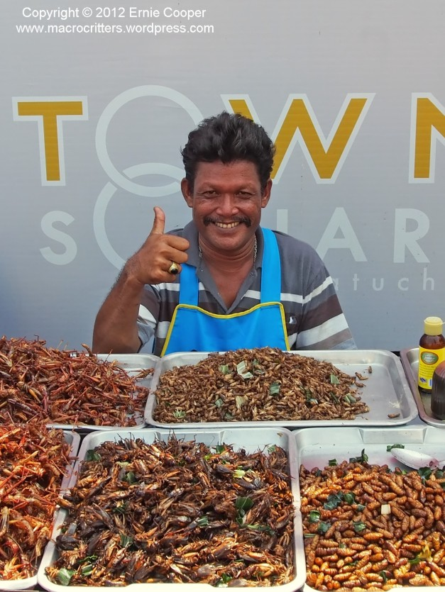 A very friendly Thai gentleman selling stir-fried insects outside the Chatuchak (weekend) market in Bangkok, Thailand