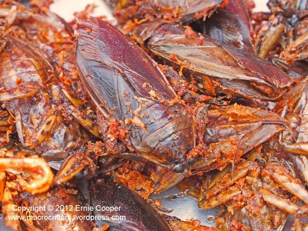 Another photo of fried giant water bugs--the idea of eating these critters was pretty intimidating as they were 7-10 cm (3-4 inches) long!