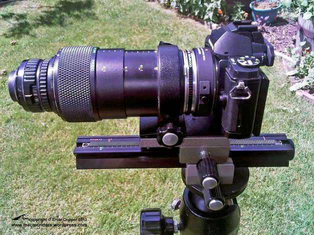 Nikkor 50mm F2.8 enlarger lens reversed and mounted on an Olympus telescopic auto extension tube 65-116 fully extended